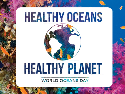 ICCE event_beach cleanup_world ocean day_4